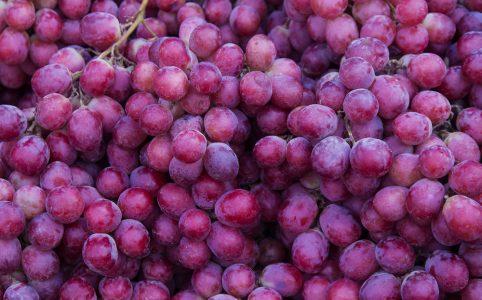 De wereld van de onbekende druiven